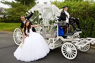 Horse & Carriage 1